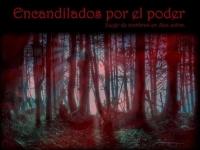 LOS VIERNES EN CENTRAL : ENCANDILADOS POR EL PODER